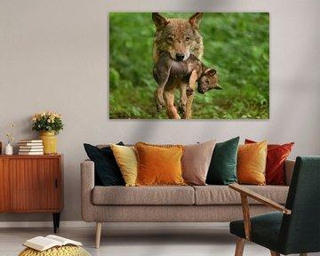 Mutter-Wolf Junge von Eveline Lenderink