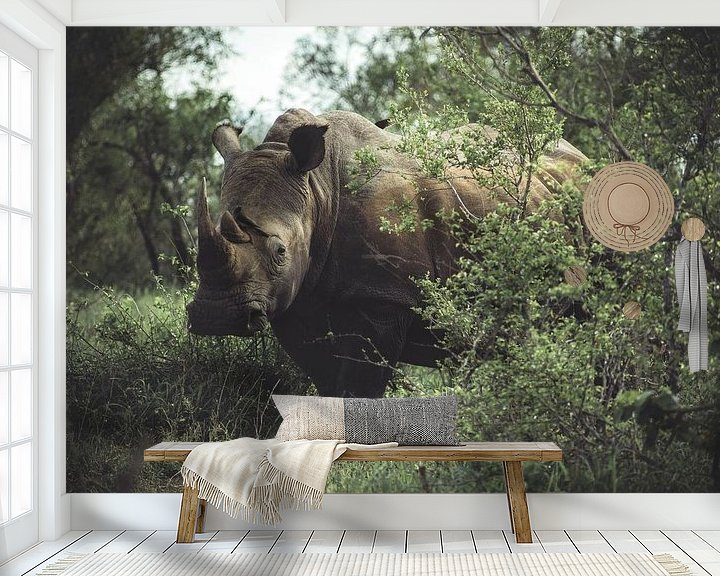 Beispiel fototapete: Nashorn im Kruger National Park. von Niels Jaeqx