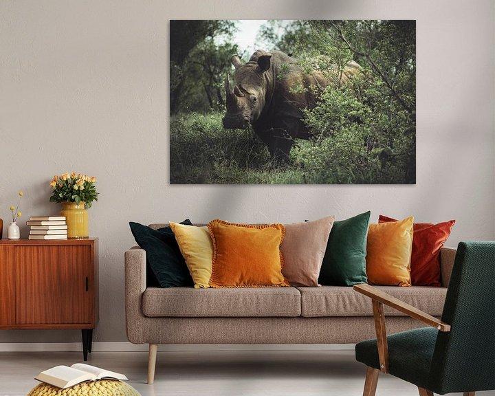 Beispiel: Nashorn im Kruger National Park. von Niels Jaeqx