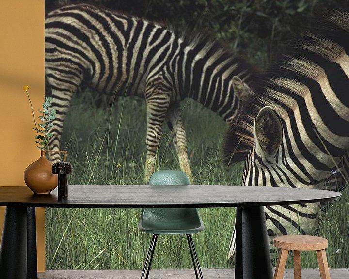 Beispiel fototapete: Zebras. von Niels Jaeqx