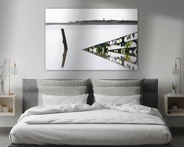 Zeewier groen 4 van Albert Wester Terschelling Photography
