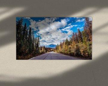 Road trip Les Rocheuses Canadiennes .... sur Robert Van Der Linde
