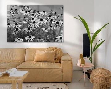 Bloemen in zwart-wit von Anita van Hengel