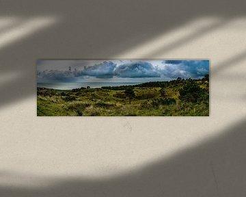 Vlieland Panorama von Danny Leij