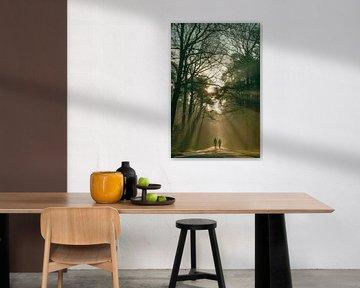 Wandelen over de Bosweg in Oisterwijk. van Miranda Rijnen Fotografie