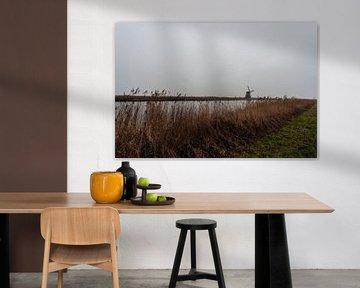Kinderdijk Zuid Holland.