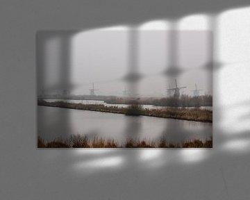Kinderdijk Windmolens in de mist