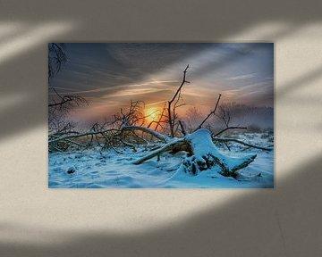 Foggy sunrise 3 van Natascha IPenD