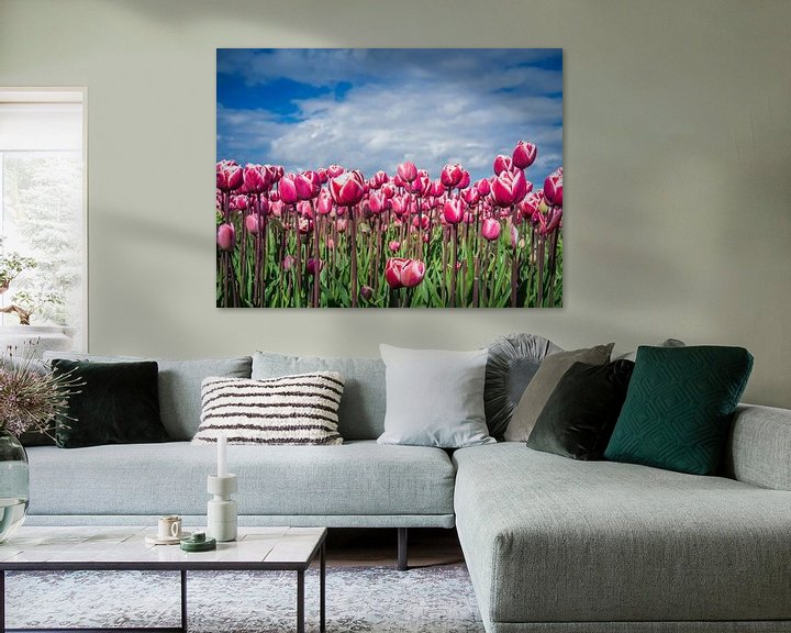 Sfeerimpressie: Paarse Tulpen van Martijn Tilroe