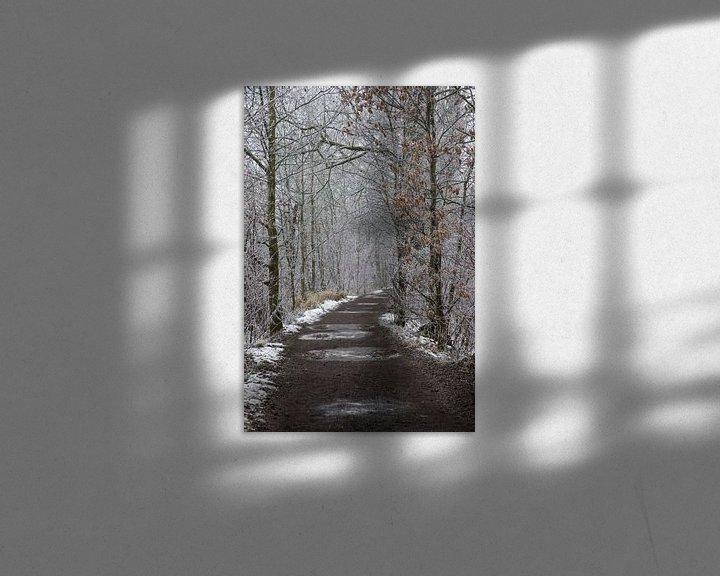Impression: a winter path sur Koen Ceusters
