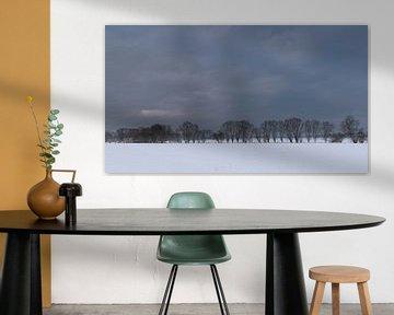 a minimalistic winter landscape