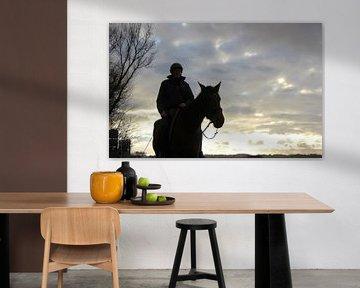 Texel Landschap 022 van Starworks Lien van der Star