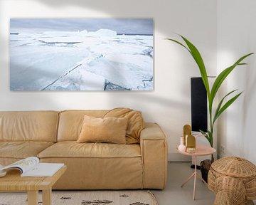 IJsschotsen bij Antarctica van Sietske Ebus-Mulders
