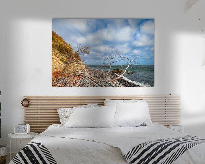 Impression: Ostseeküste auf der Insel Moen in Dänemark sur Rico Ködder