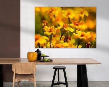 Blumenwelt 1 von Dirk Herdramm