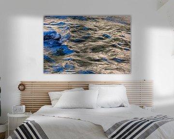 Zeeleeuw in het blauw I von Fons Simons
