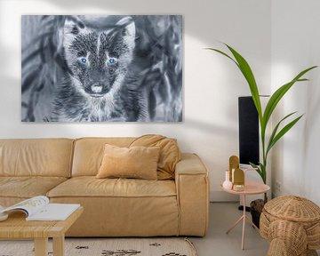 Wolf met blauwe ogen van Ans Bastiaanssen
