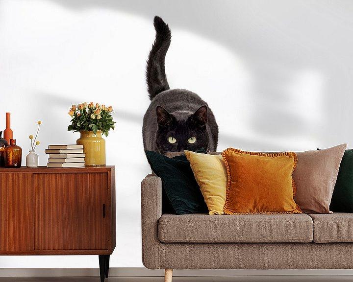 Sfeerimpressie behang: Zwarte kat op witte achtergrond van Barbara Koppe