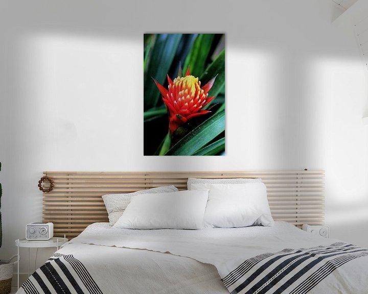 Beispiel: Tropische Blume von Michiel piet
