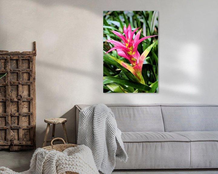 Sfeerimpressie: Roze bloem van Michiel piet