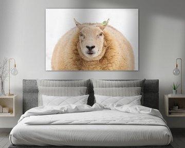 Portret van een schaap von Marijke van Eijkeren