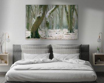 Beukenbomen met dramatische vormen in een nevelig en sneeuw bedekt Speulderbos van Sjoerd van der Wal