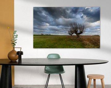 Stormachtige lucht boven een weiland van Michel Knikker
