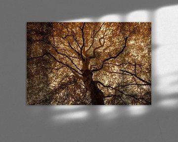 Majestätischer Baum in Duoton von Hanneke Luit