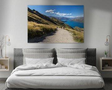 Roys Peak, Lake Wanaka von Willem Vernes