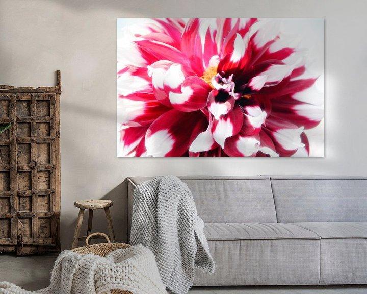 Impression: Fleurs en Highkey sur Roland de Zeeuw fotografie