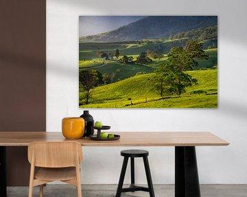 New South Wales, Australie von Willem Vernes