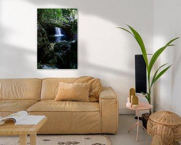 New South Wales, Australie, Waterval, Natural Bridge, Springbrook National Park von Willem Vernes