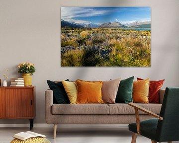 Mount Cook, Nieuw-Zeeland, Lake Pukaki von Willem Vernes