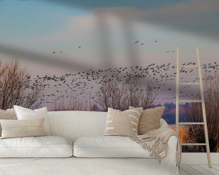 Sfeerimpressie behang: vogeltrek de ochtend van Gertjan Hesselink