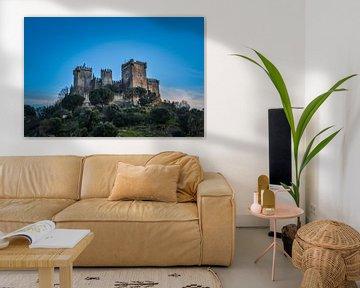 Mittelalterliches Schloss in Spanien von Sanne Lillian van Gastel