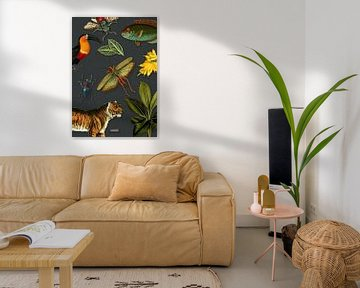 Tropische schoolplaat met vogels, vissen en jungle dieren. von Studio POPPY