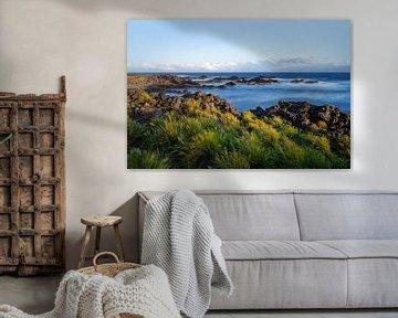 Rotsachtig strand met water en gras bij sterke wind van Ralf Lehmann