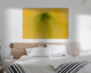 Makrofoto - Detail der gelben Brugmansia von Marianne van der Zee