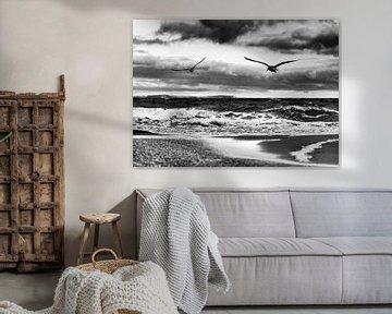 Flying birds on the Baltic Sea beach black and white van Ralf Lehmann