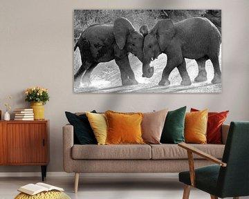 Spelende olifantjes. van Marjo Snellenburg