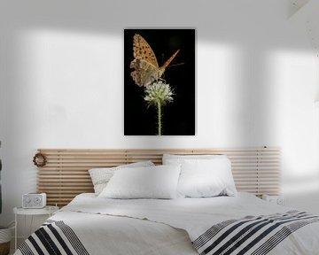 Kaisermantel op bloei in staand formaat van Uwe Ulrich Grün