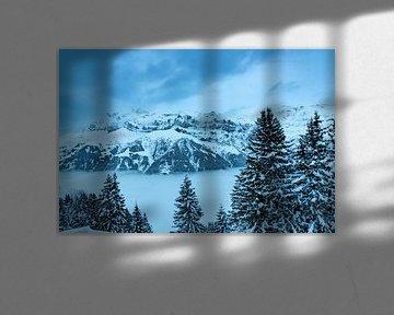 Mist in een dal in de Zwitserse Alpen van Mike Maes