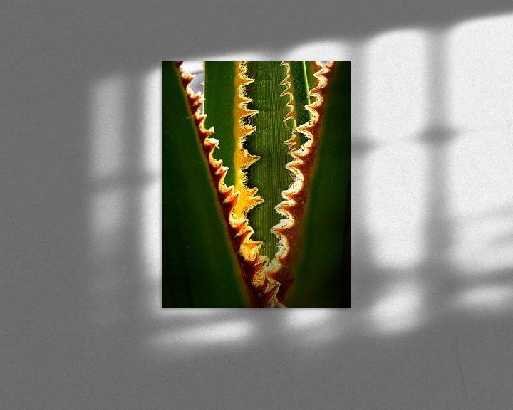 Sfeerimpressie: Palmboom van Harrie Muis