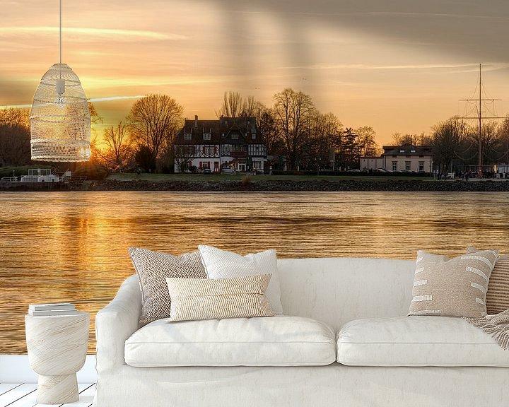 Beispiel fototapete: Goldener Sonnenuntergang am Rhein von Uwe Ulrich Grün