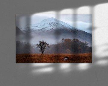 Een mistige herfst ochtend aan de voet van de Ben Navis in Schotland van Guido Boogert