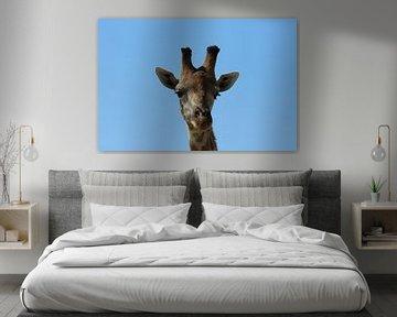 Giraf von Linda Ubels
