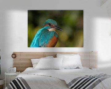 IJsvogel van Han Peper