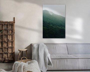 Ardenne mist van Andy Troy