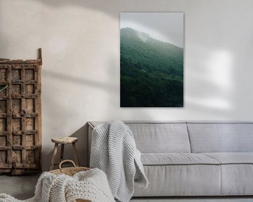 Ardenne mist