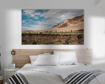 Marokko landschap 3 van Andy Troy